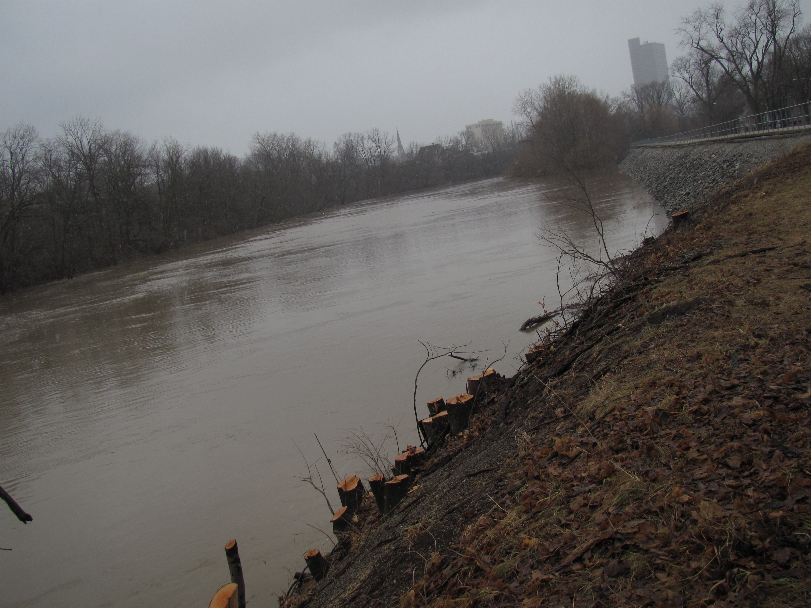 Maumee River @ Edgewater Blvd.
