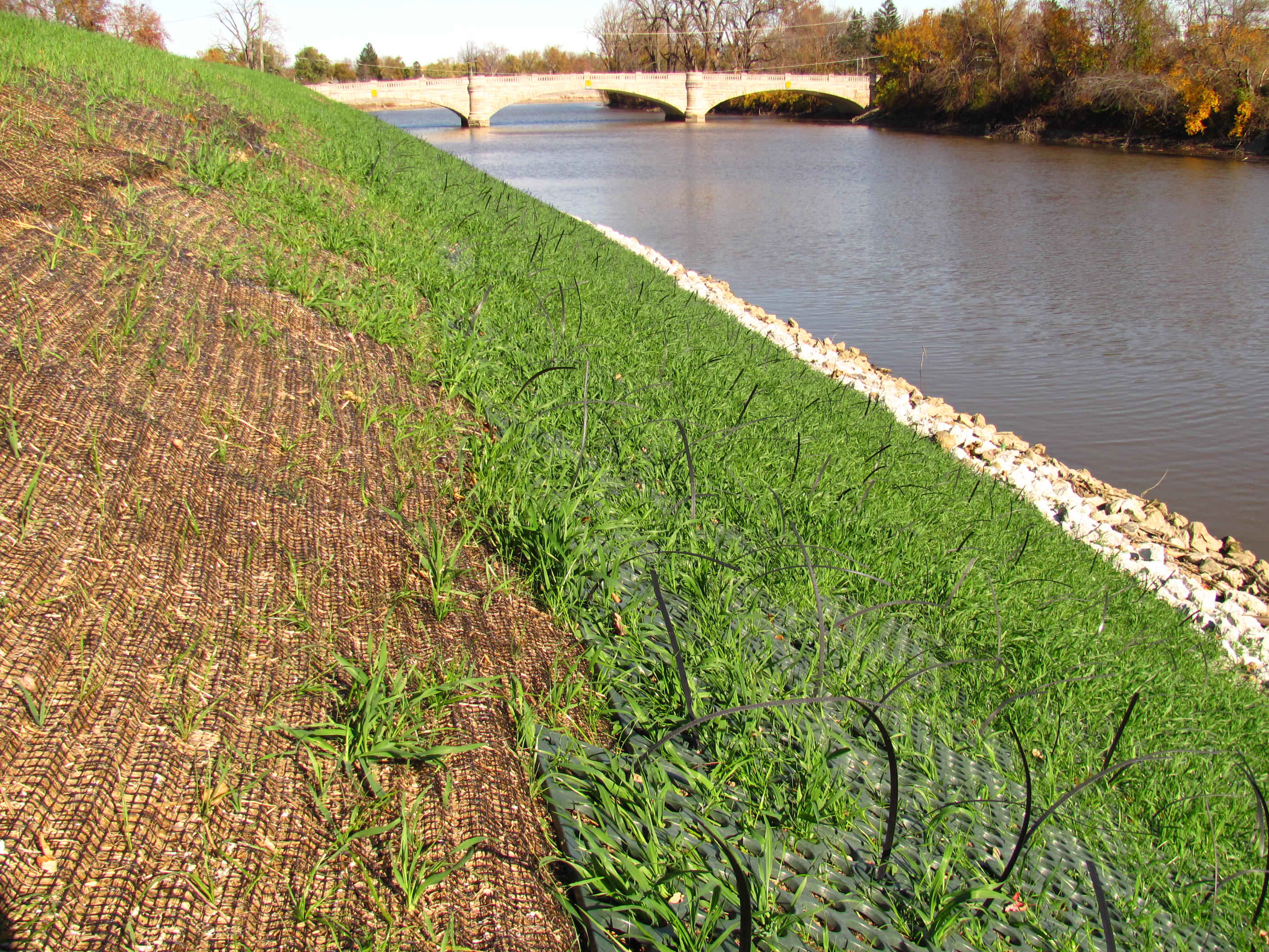 Edgewater levee AFTER vegetation removal & installation of Scour-Stop