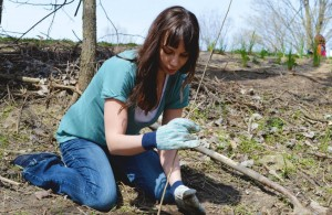 One of our hundreds of volunteers, planting along the Maumee River